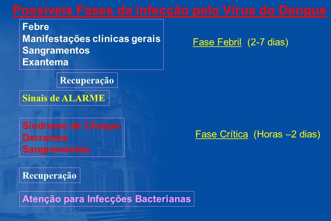 Possíveis Fases da infecção pelo Vírus do Dengue Febre Manifestações clínicas gerais Sangramentos Exantema Fase Febril (2-7 dias) Sinais de ALARME Sin