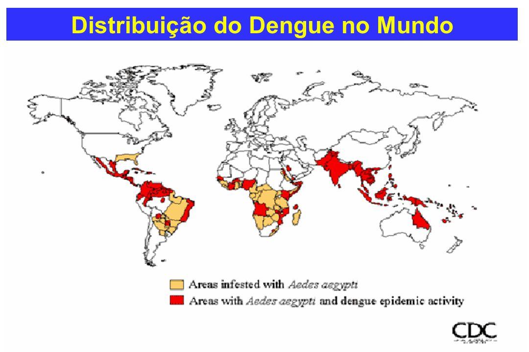 Fatores de Risco Individual Fatores de Risco Epidemiológico Fatores Virais - Idade -Sexo -Raça -Estado Nutricional -Infecção Secundária -Resposta do Hospedeiro -Número de Susceptíveis -Alta Densidade do Vetor -Ampla Circulação Viral -Hiperendemi- cidade -Virulência da cepa -Sorotipo