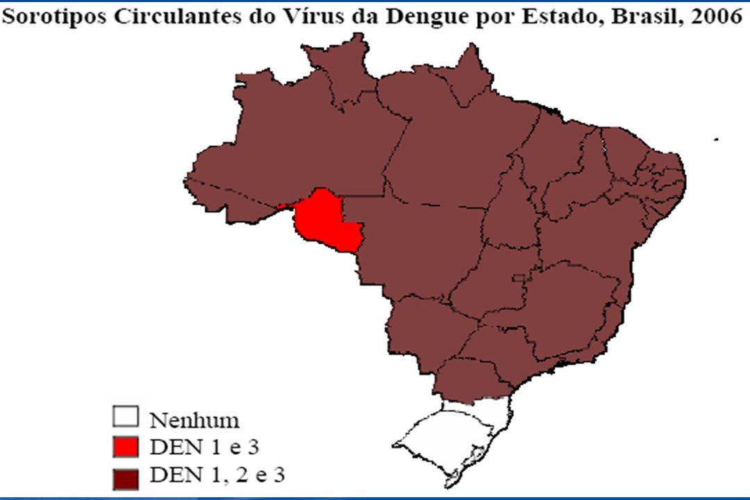 Definição de Caso Clínico para a Febre Hemorrágica do Dengue (OMS) n Febre ou história recente de febre aguda n Manifestações hemorrágicas n Baixa contagem de plaquetas (100.000/mm 3 ou menos) n Evidência objetiva de extravasamento vaso capilar: hematócrito elevado (20% ou mais acima da linha de base) hematócrito elevado (20% ou mais acima da linha de base) baixa albumina baixa albumina derrames cavitários ou outras efusões derrames cavitários ou outras efusões 4 Critérios Necessários: