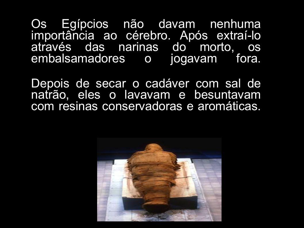 Os Egípcios não davam nenhuma importância ao cérebro. Após extraí-lo através das narinas do morto, os embalsamadores o jogavam fora. Depois de secar o