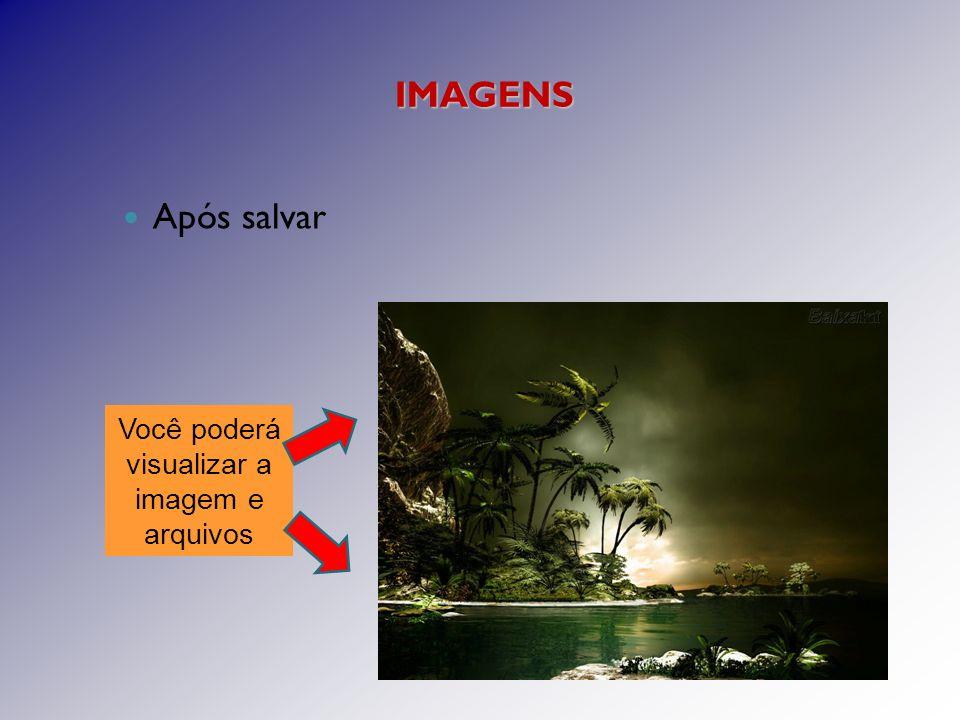 Após salvar Você poderá visualizar a imagem e arquivos IMAGENS