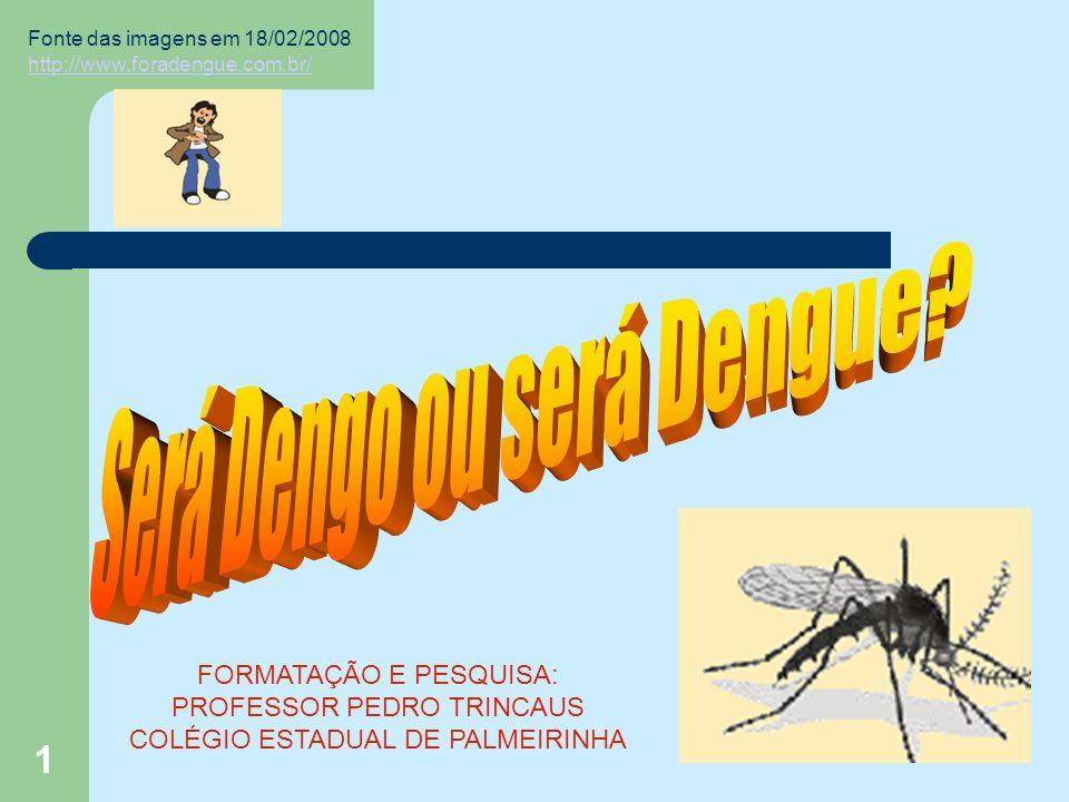 1 Fonte das imagens em 18/02/2008 http://www.foradengue.com.br/ http://www.foradengue.com.br/ FORMATAÇÃO E PESQUISA: PROFESSOR PEDRO TRINCAUS COLÉGIO ESTADUAL DE PALMEIRINHA