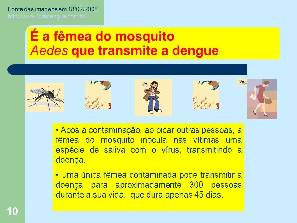 10 É a fêmea do mosquito Aedes que transmite a dengue Após a contaminação, ao picar outras pessoas, a fêmea do mosquito inocula nas vítimas uma espécie de saliva com o vírus, transmitindo a doença.