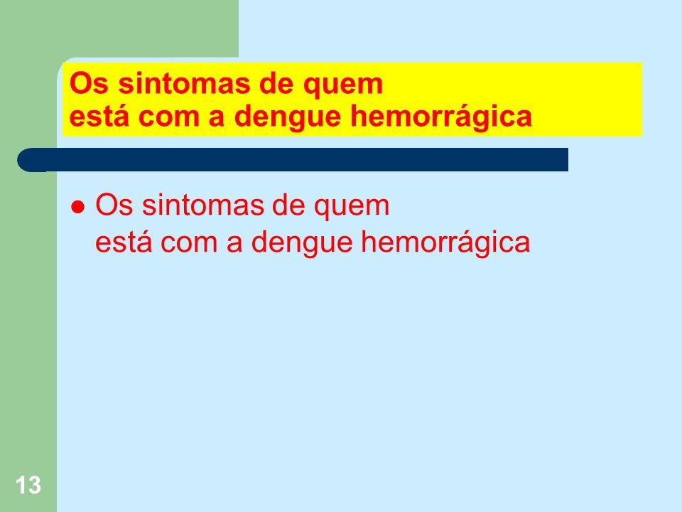 13 Os sintomas de quem está com a dengue hemorrágica