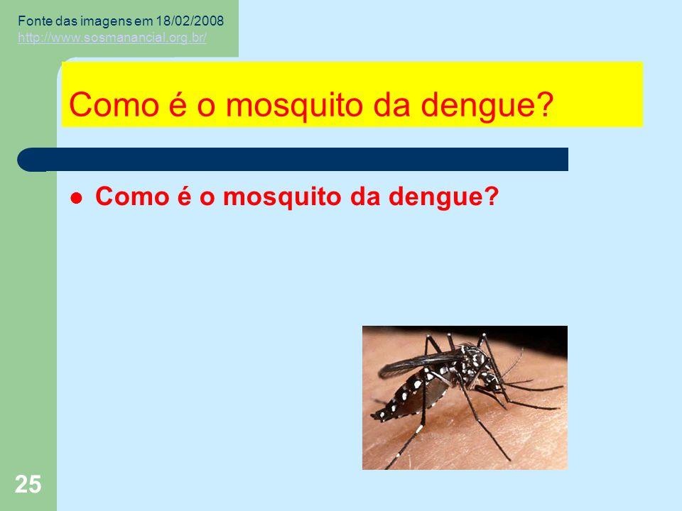 25 Como é o mosquito da dengue.