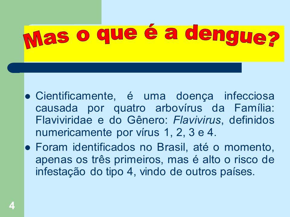 4 Cientificamente, é uma doença infecciosa causada por quatro arbovírus da Família: Flaviviridae e do Gênero: Flavivirus, definidos numericamente por vírus 1, 2, 3 e 4.