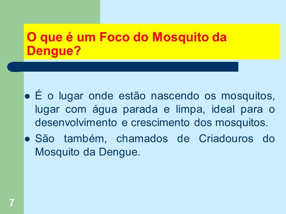 28 As larvas do mosquito da dengue