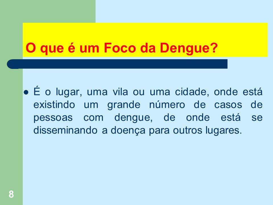 8 O que é um Foco da Dengue.
