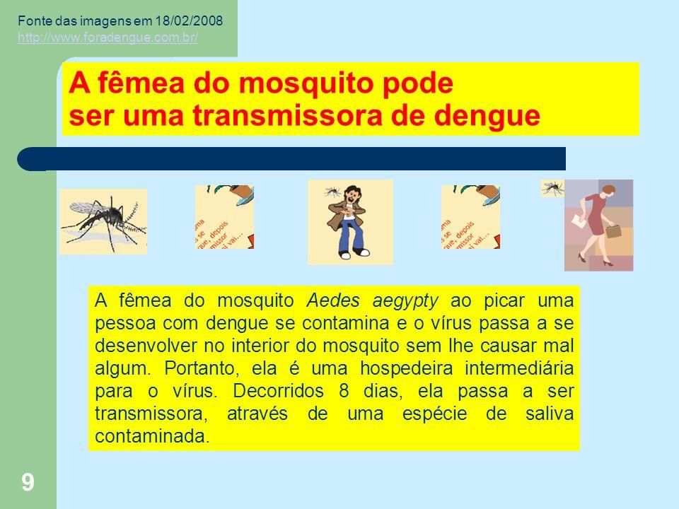 9 A fêmea do mosquito pode ser uma transmissora de dengue A fêmea do mosquito Aedes aegypty ao picar uma pessoa com dengue se contamina e o vírus passa a se desenvolver no interior do mosquito sem lhe causar mal algum.