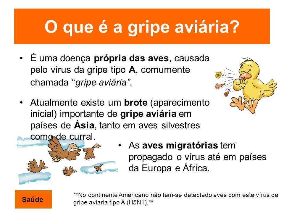 O que é a gripe aviária? É uma doença própria das aves, causada pelo vírus da gripe tipo A, comumente chamada gripe aviária. Atualmente existe um brot