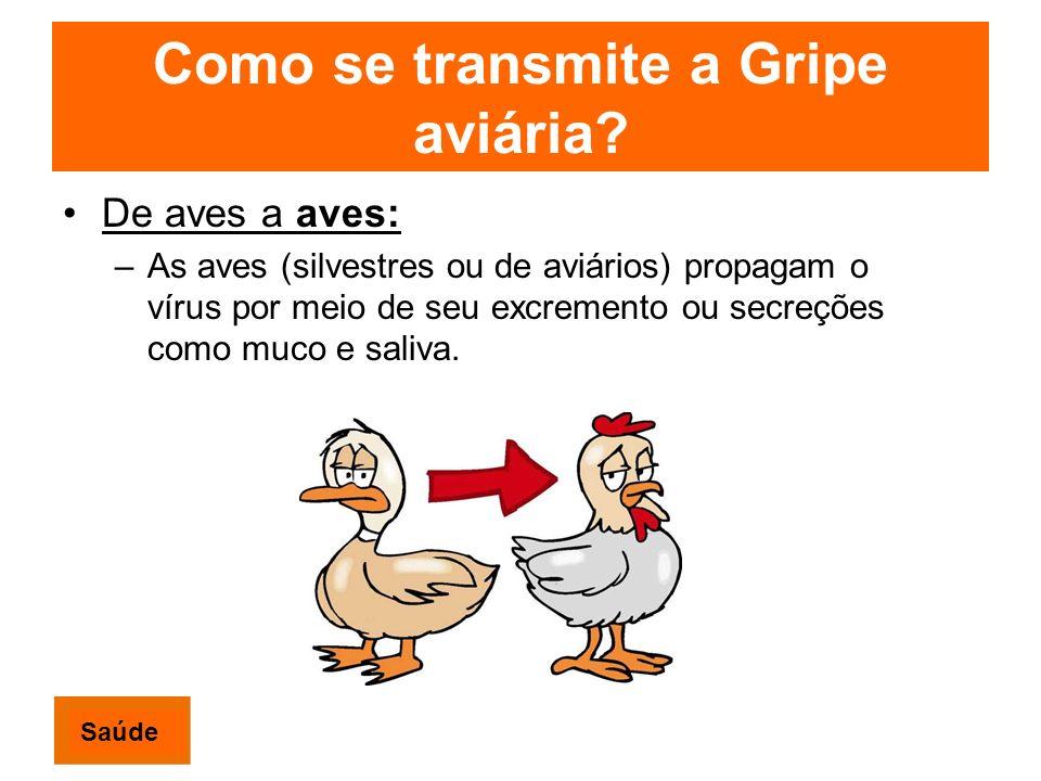 Como se transmite a Gripe aviária? De aves a aves: –As aves (silvestres ou de aviários) propagam o vírus por meio de seu excremento ou secreções como