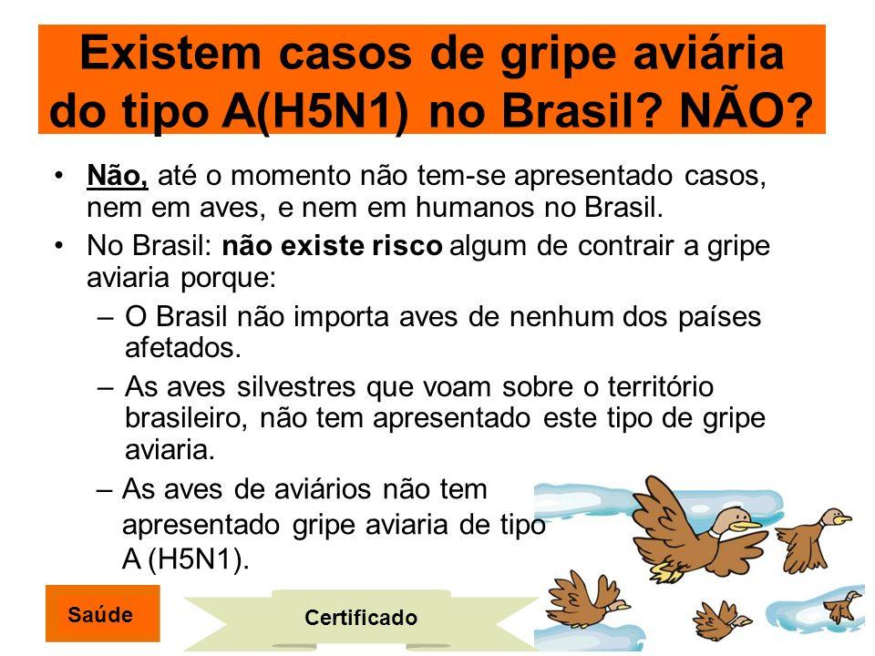 Não, até o momento não tem-se apresentado casos, nem em aves, e nem em humanos no Brasil. No Brasil: não existe risco algum de contrair a gripe aviari