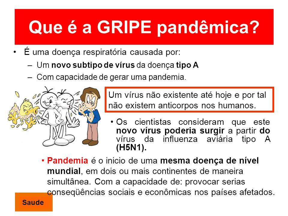 Que é a GRIPE pandêmica? É uma doença respiratória causada por: –Um novo subtipo de vírus da doença tipo A –Com capacidade de gerar uma pandemia. Os c
