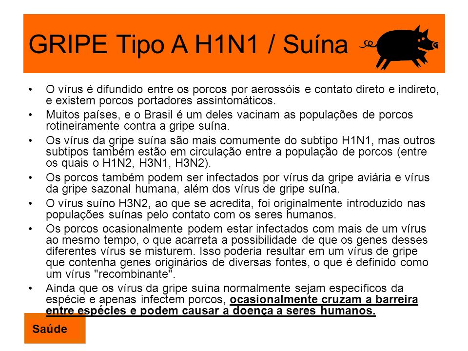 GRIPE Tipo A H1N1 / Suína O vírus é difundido entre os porcos por aerossóis e contato direto e indireto, e existem porcos portadores assintomáticos.