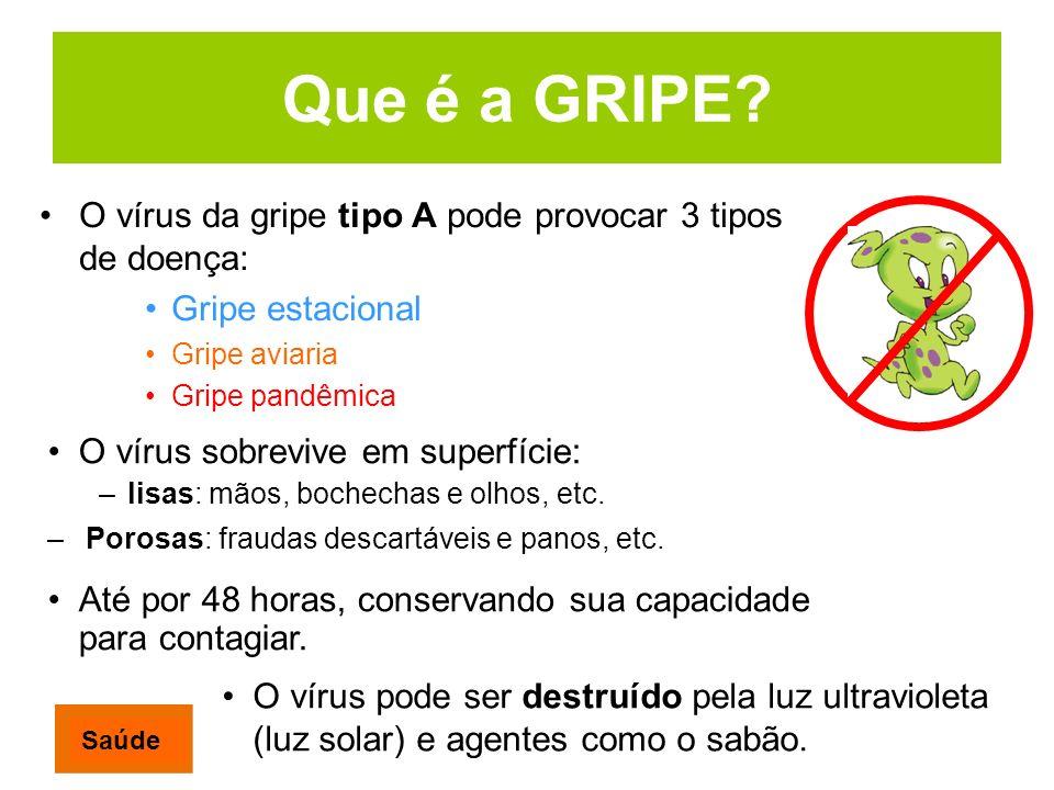 Que é a GRIPE? O vírus da gripe tipo A pode provocar 3 tipos de doença: Gripe estacional Gripe aviaria Gripe pandêmica O vírus pode ser destruído pela