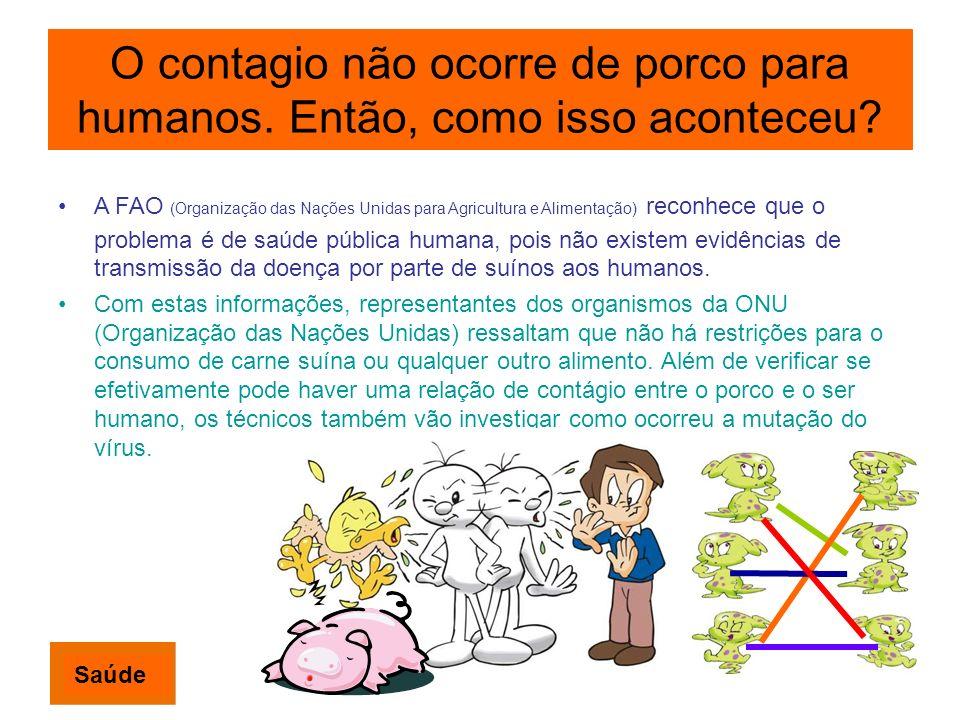 O contagio não ocorre de porco para humanos. Então, como isso aconteceu? A FAO (Organização das Nações Unidas para Agricultura e Alimentação) reconhec