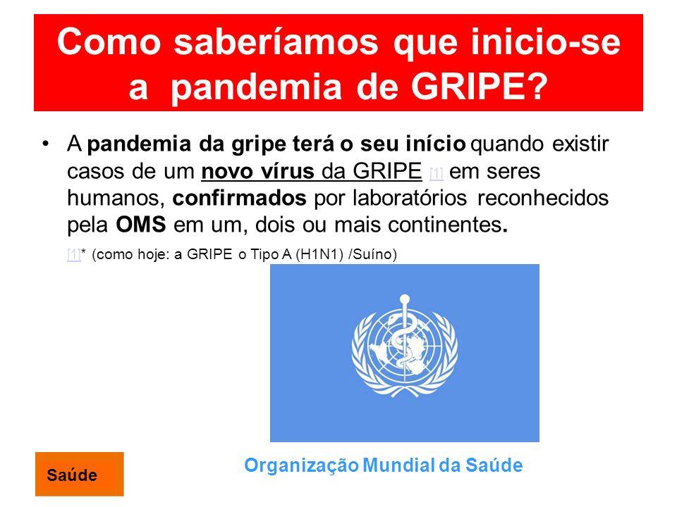 Como saberíamos que inicio-se a pandemia de GRIPE? A pandemia da gripe terá o seu início quando existir casos de um novo vírus da GRIPE [1] em seres h