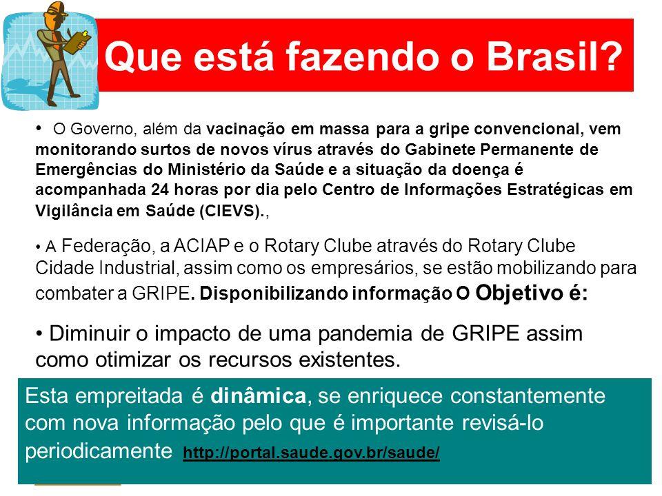 Que está fazendo o Brasil? O Governo, além da vacinação em massa para a gripe convencional, vem monitorando surtos de novos vírus através do Gabinete