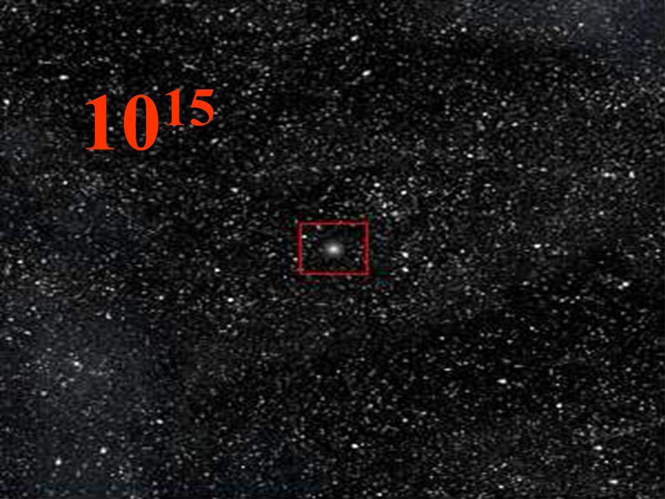 O núcleo da célula já fica visível. 10 -6 1 micrometro