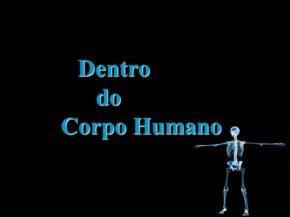 Dentro do do Corpo Humano Corpo Humano