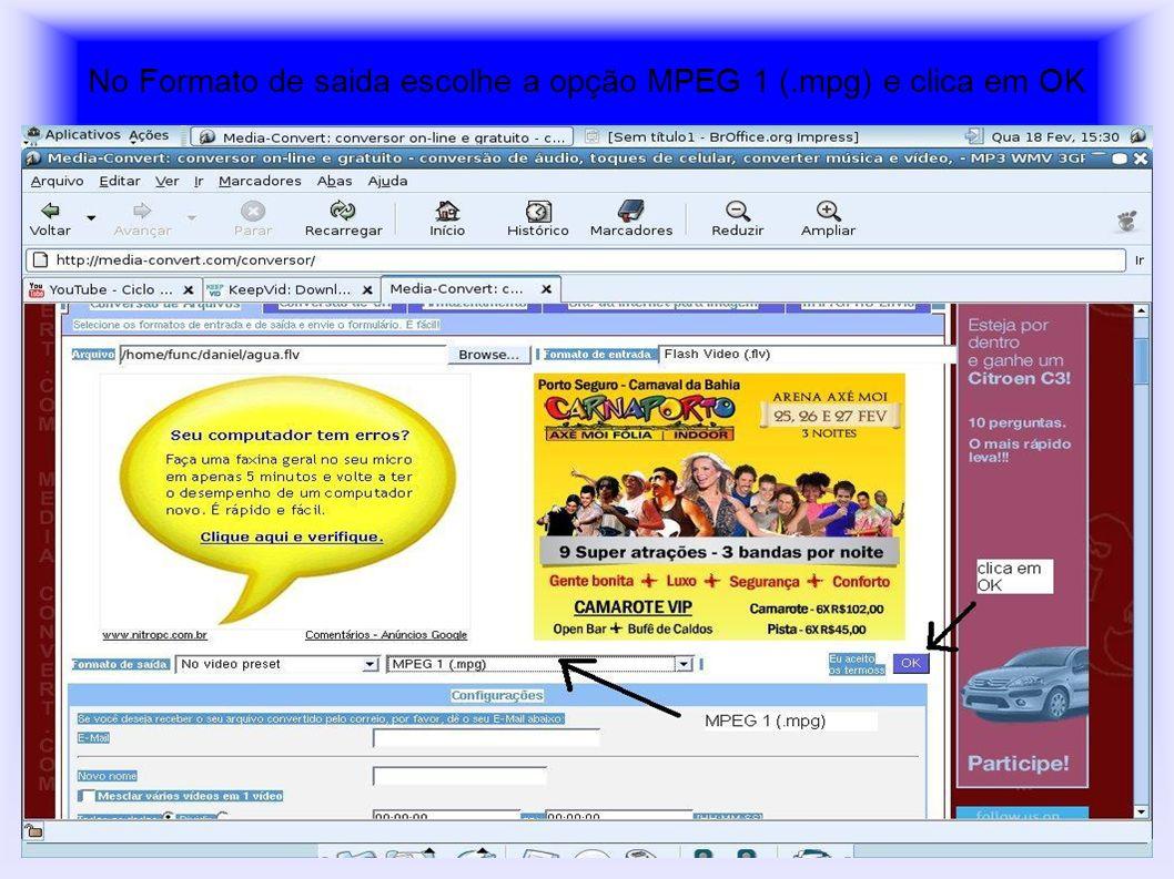 No Formato de saida escolhe a opção MPEG 1 (.mpg) e clica em OK