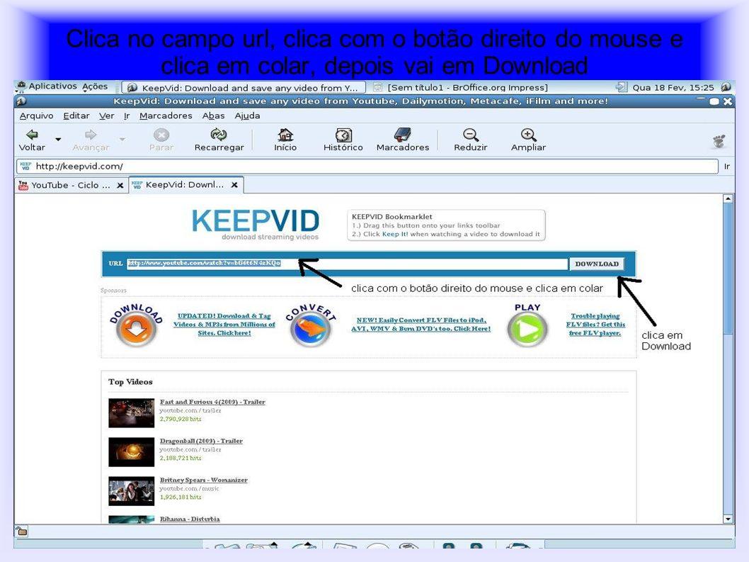 Clica a primeira opção get_video.flv
