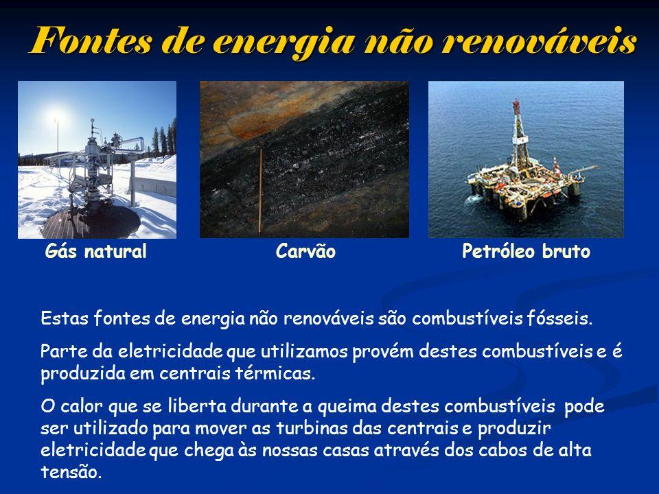 Fontes de energia não renováveis Gás naturalPetróleo brutoCarvão Estas fontes de energia não renováveis são combustíveis fósseis. Parte da eletricidad