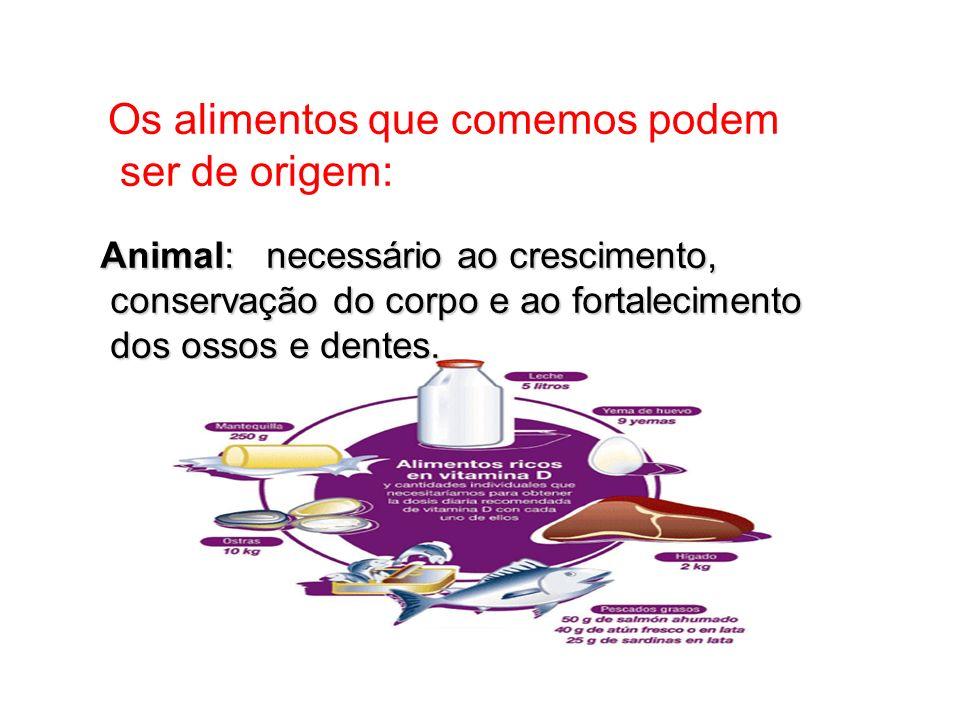 Alimentos de origem animal: Carne, ovos, leite e seus derivados.
