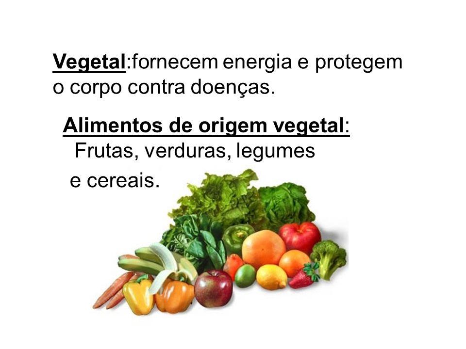 Mineral: Indispensável ao nosso organismo. Exemplos: SAL ÁGUA