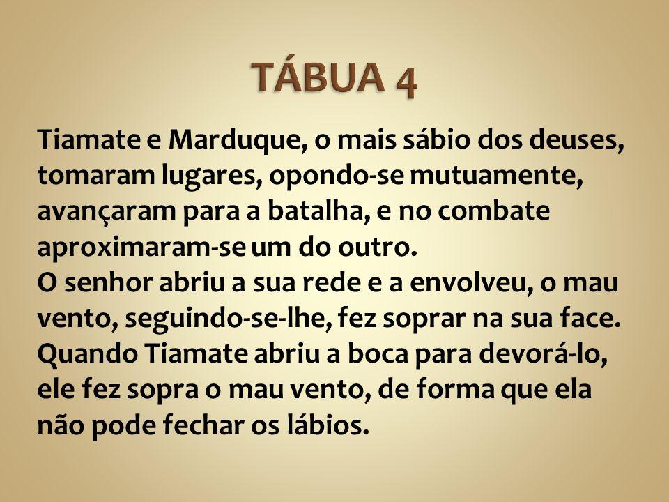 Tiamate e Marduque, o mais sábio dos deuses, tomaram lugares, opondo-se mutuamente, avançaram para a batalha, e no combate aproximaram-se um do outro.