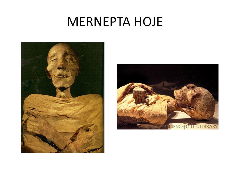 MERNEPTA HOJE