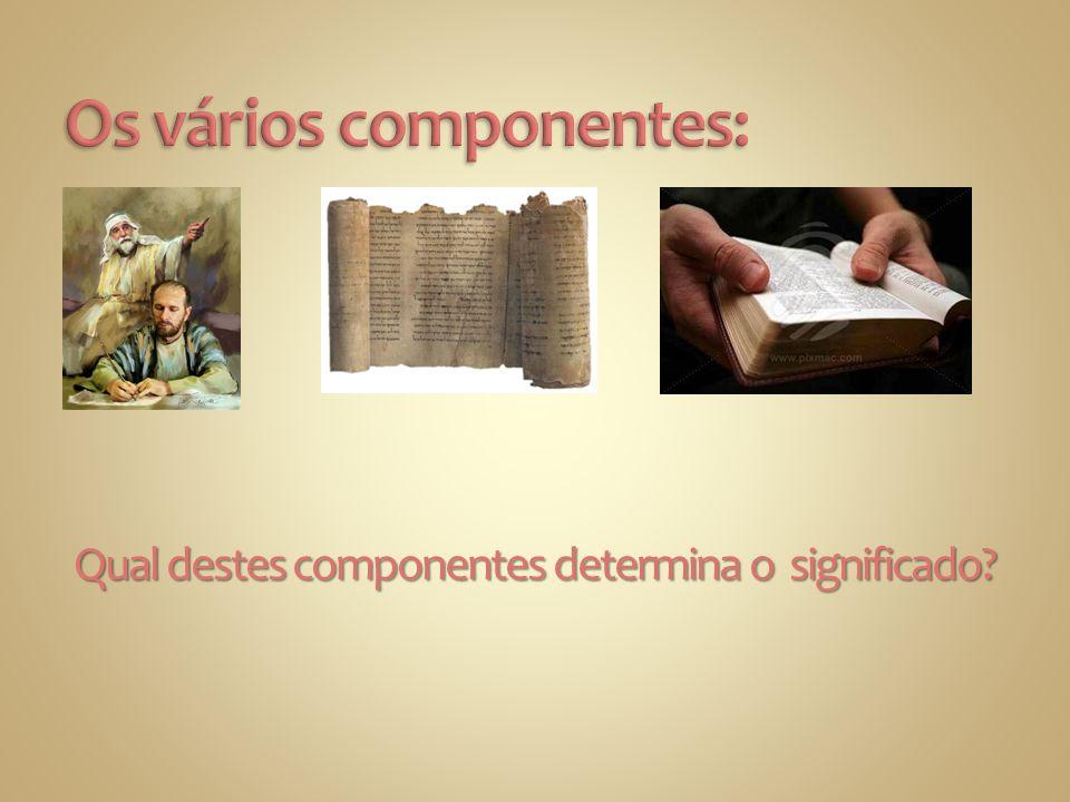Qual destes componentes determina o significado?