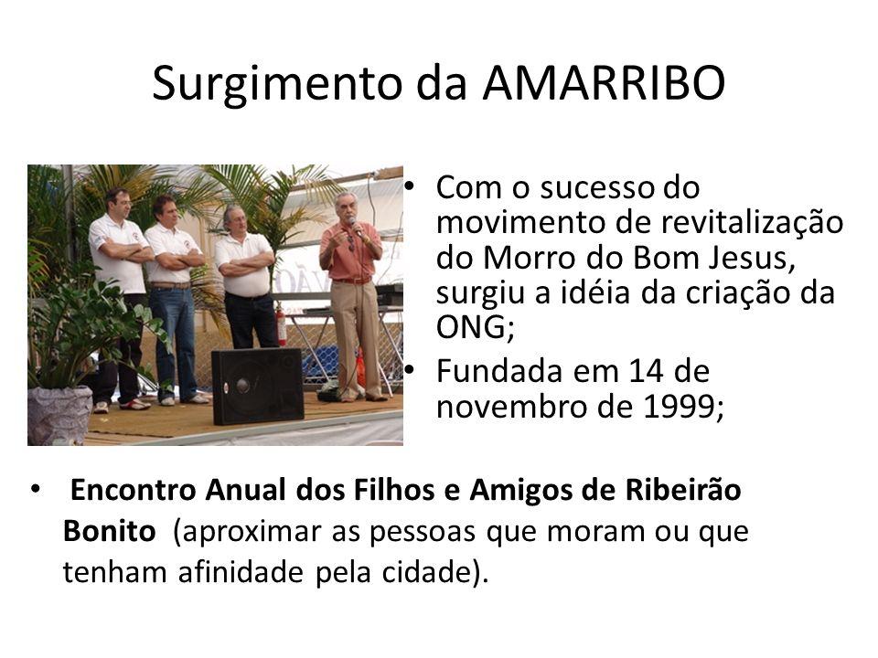 Surgimento da AMARRIBO Com o sucesso do movimento de revitalização do Morro do Bom Jesus, surgiu a idéia da criação da ONG; Fundada em 14 de novembro