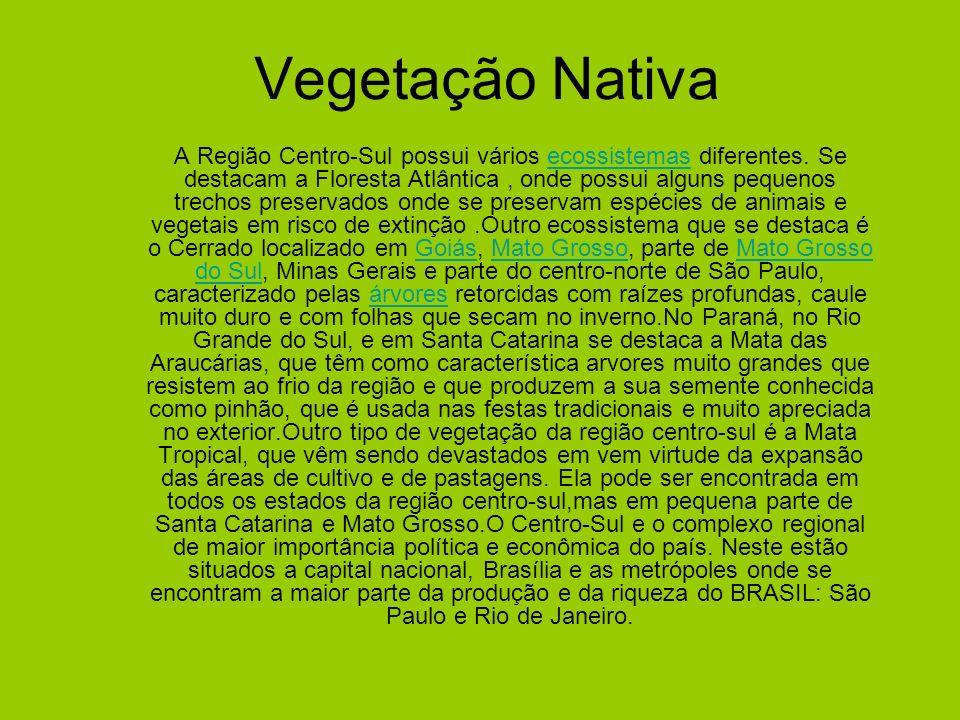 Vegetação Nativa A Região Centro-Sul possui vários ecossistemas diferentes. Se destacam a Floresta Atlântica, onde possui alguns pequenos trechos pres
