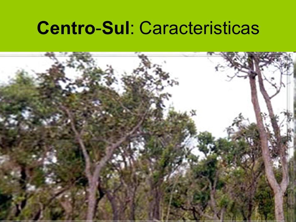 A Microrregião Centro-Sul se inicia bem próximo à capital gaúcha, Porto Alegre