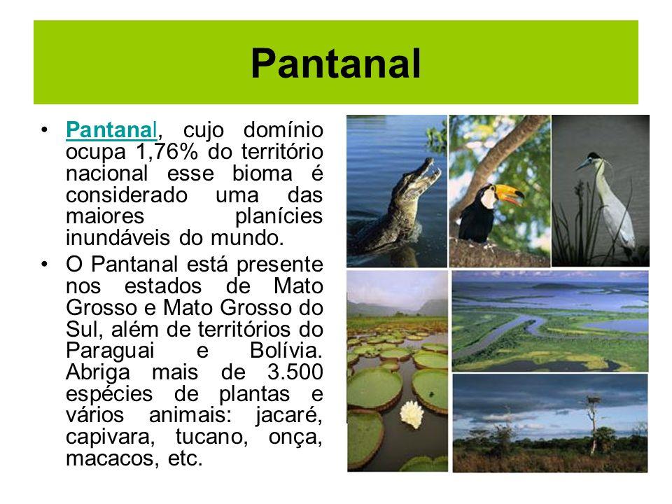 Pantanal Pantanal, cujo domínio ocupa 1,76% do território nacional esse bioma é considerado uma das maiores planícies inundáveis do mundo.Pantanal O P