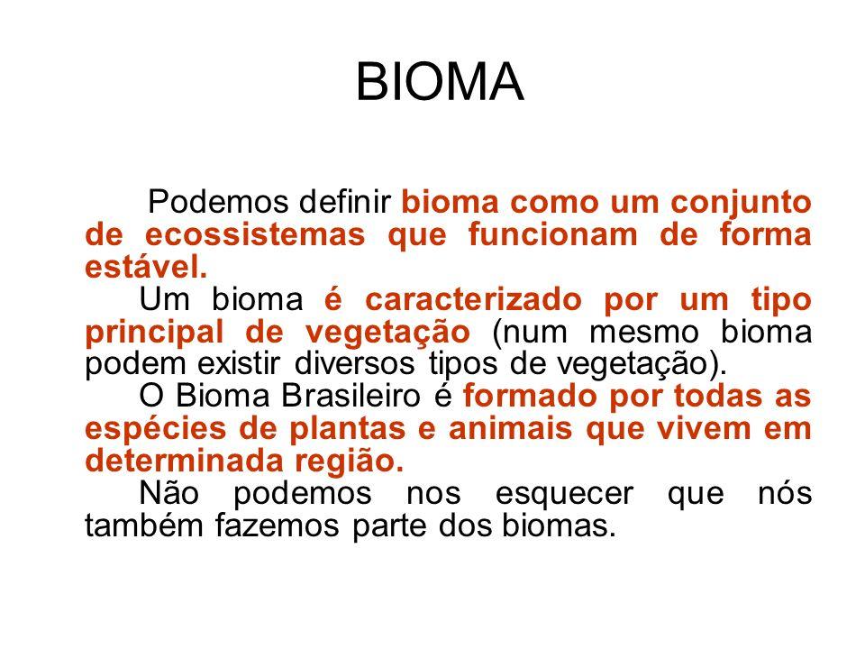BIOMA Podemos definir bioma como um conjunto de ecossistemas que funcionam de forma estável. Um bioma é caracterizado por um tipo principal de vegetaç