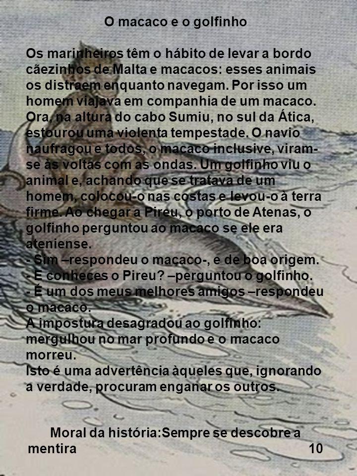 O macaco e o golfinho Os marinheiros têm o hábito de levar a bordo cãezinhos de Malta e macacos: esses animais os distraem enquanto navegam. Por isso