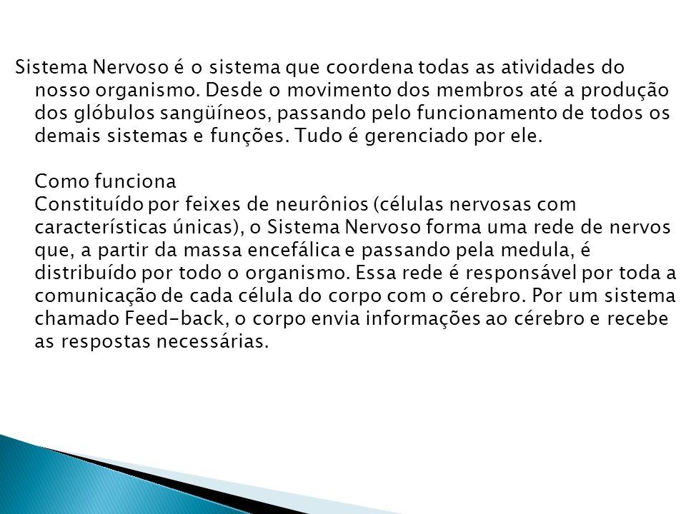 Cuide bem Quando há problemas no Sistema Nervoso, certamente outros sistemas e funções são afetados.