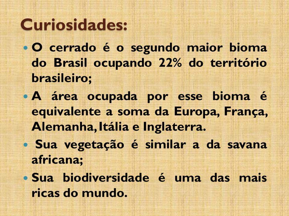 Curiosidades: O cerrado é o segundo maior bioma do Brasil ocupando 22% do território brasileiro; A área ocupada por esse bioma é equivalente a soma da Europa, França, Alemanha, Itália e Inglaterra.
