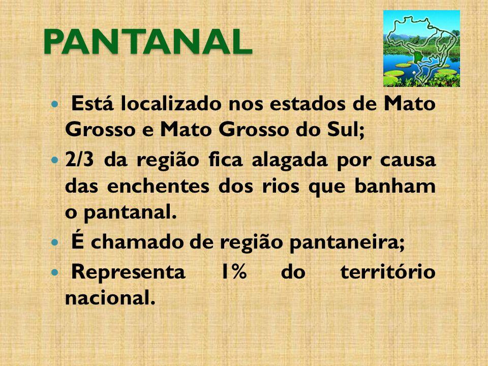 Está localizado nos estados de Mato Grosso e Mato Grosso do Sul; 2/3 da região fica alagada por causa das enchentes dos rios que banham o pantanal.