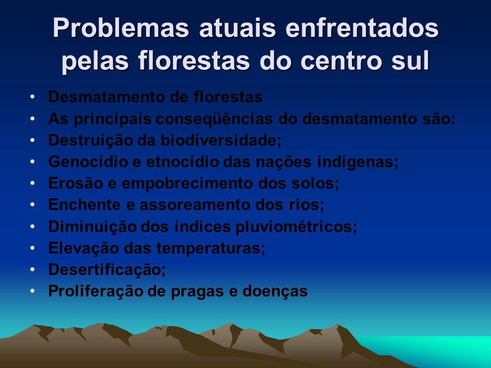 Problemas atuais enfrentados pelas florestas do centro sul Desmatamento de florestas As principais conseqüências do desmatamento são: Destruição da bi