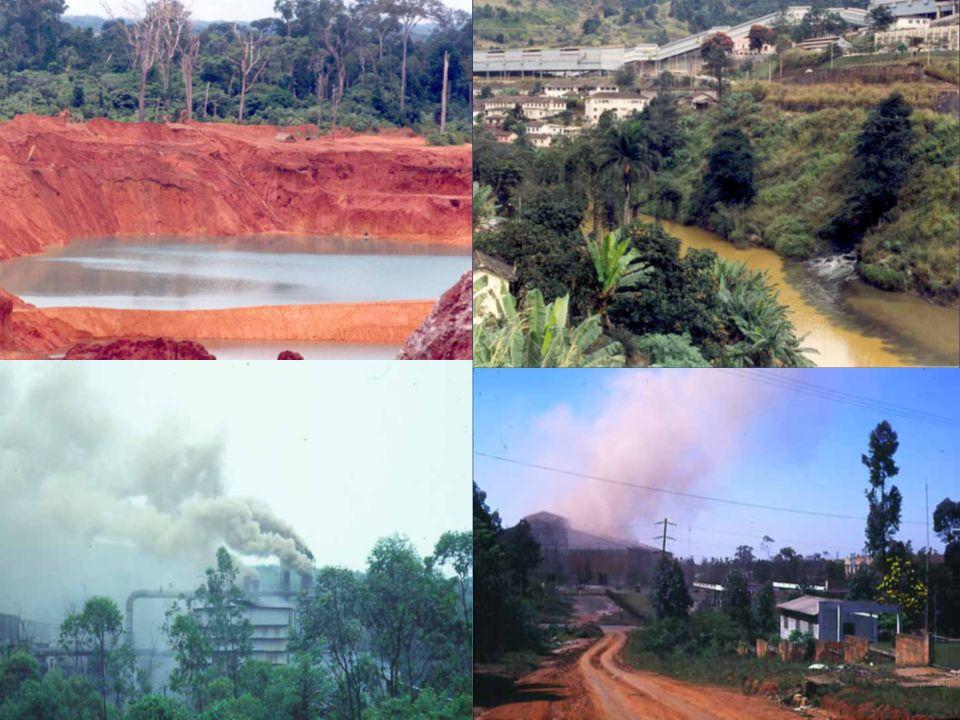 Veja as principais florestas do Brasil Floresta Amazônica Mata Atlântica Floresta das Araucárias Mata dos Cocais OBS: De acordo com resolução da ONU, o ano de 2011 será o Ano Internacional das Florestas.