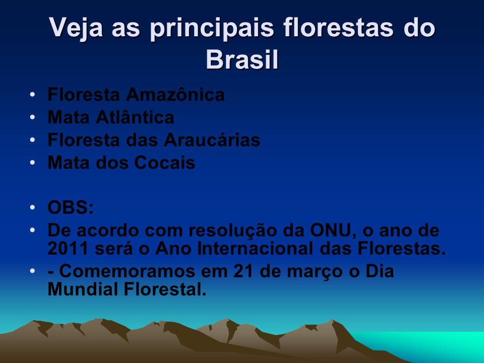 Veja as principais florestas do Brasil Floresta Amazônica Mata Atlântica Floresta das Araucárias Mata dos Cocais OBS: De acordo com resolução da ONU,