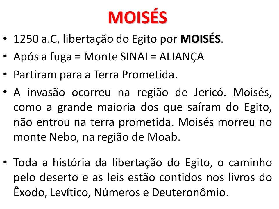 MOISÉS MOISÉS 1250 a.C, libertação do Egito por MOISÉS. Após a fuga = Monte SINAI = ALIANÇA Partiram para a Terra Prometida. A invasão ocorreu na regi