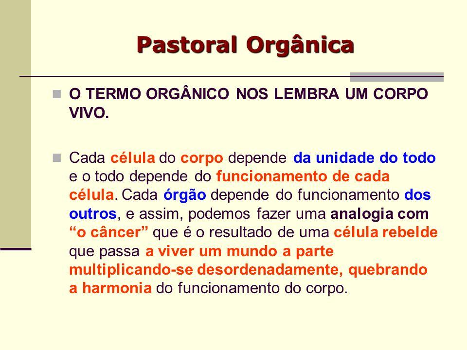 Pastoral Orgânica É a organização da ação da igreja, nos vários níveis, estruturas, situações e dimensões, e ao mesmo tempo, a busca comum das necessidades pastorais urgentes e dos meios mais adequados para responder essas necessidades.