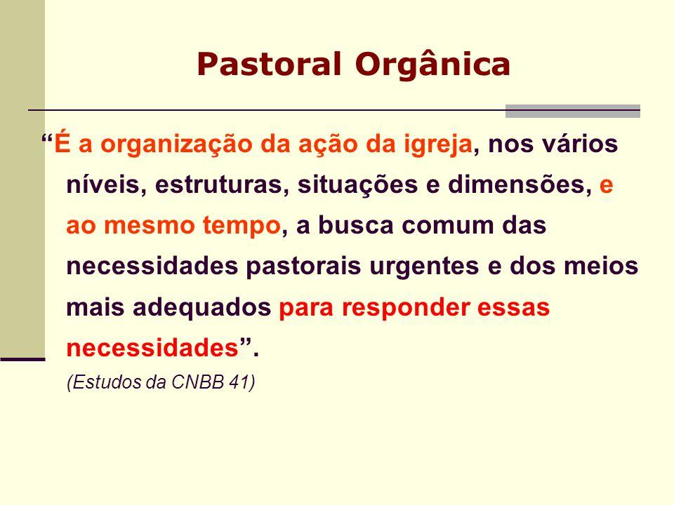 Pastoral Orgânica É a organização da ação da igreja, nos vários níveis, estruturas, situações e dimensões, e ao mesmo tempo, a busca comum das necessi