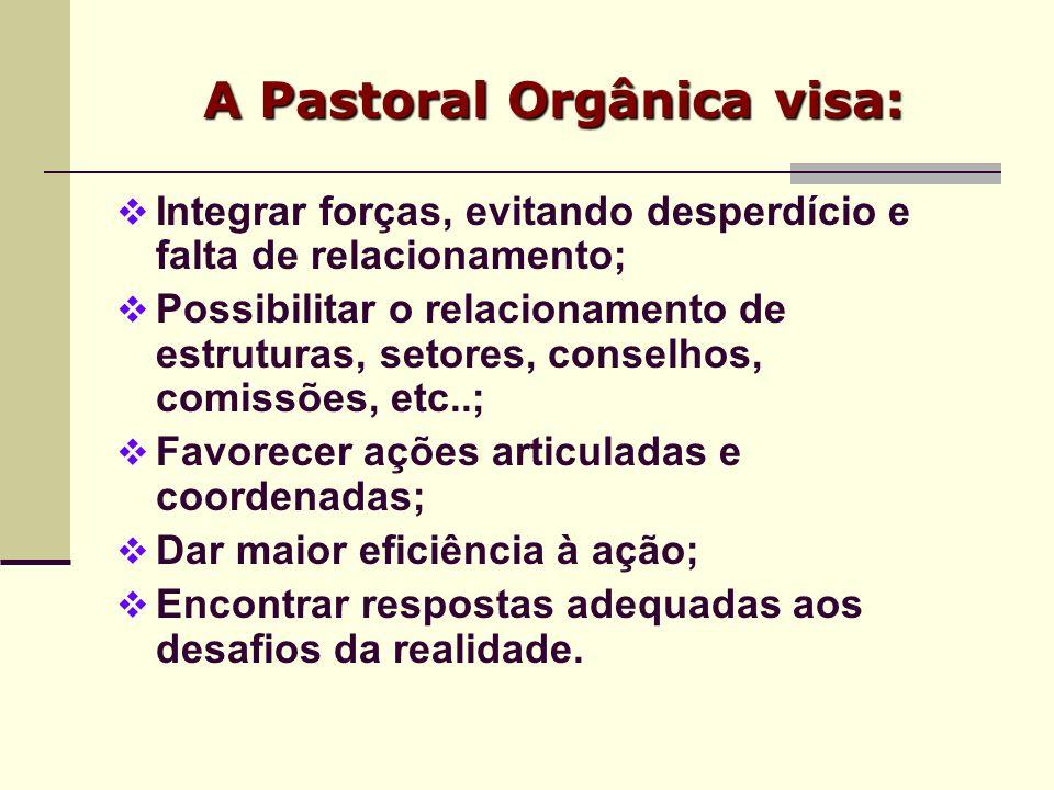 A Pastoral Orgânica visa: Integrar forças, evitando desperdício e falta de relacionamento; Possibilitar o relacionamento de estruturas, setores, conse