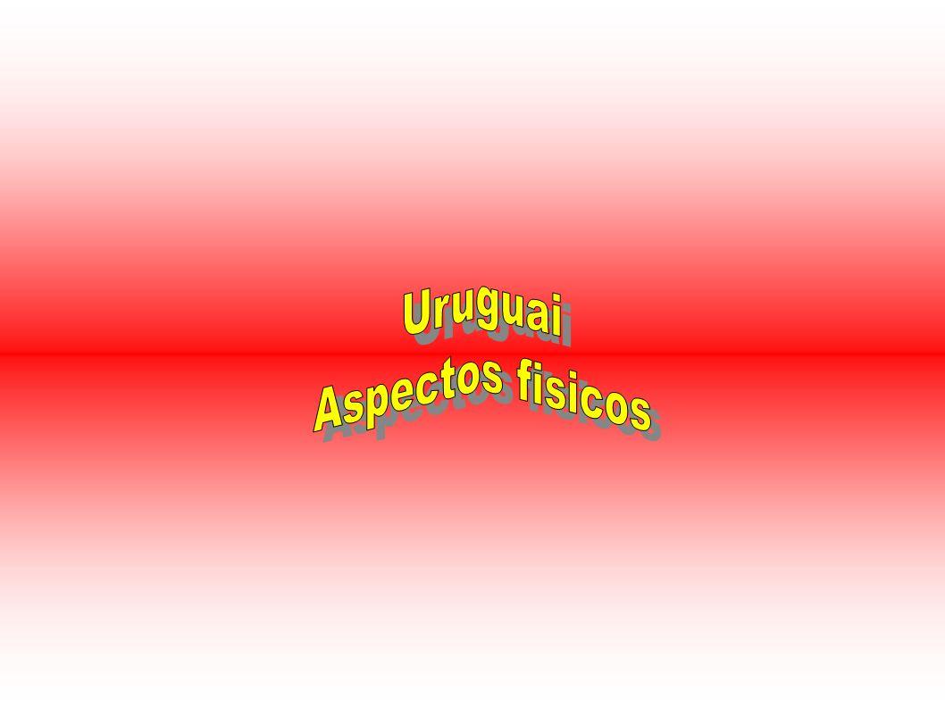 Relevo do Uruguai O relevo do Uruguai é um domínio de estudos e conhecimentos sobre todos os planaltos e planícies do território uruguaio.