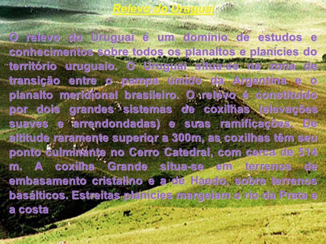 Hidrografia A Hidrografia do Uruguai envolve o conjunto de recursos hídricos do território uruguaio, as bacias hidrográficas, Oceano Atlântico, os rios, lagoas, cataratas, usinas hidrelétricas e barragens.